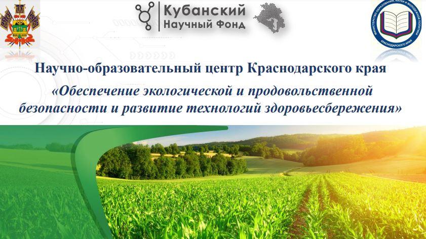 КубГУ принял участие в разработке концепции Научно-образовательного центра Краснодарского края